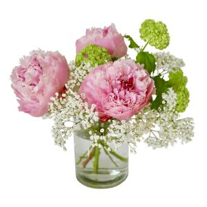 Charmed by peonies